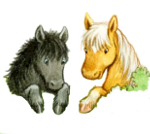 Itty & Bitty: Two Miniature Horses Children's Book Series
